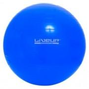 Bola Suiça  65cm - Liveup Sports