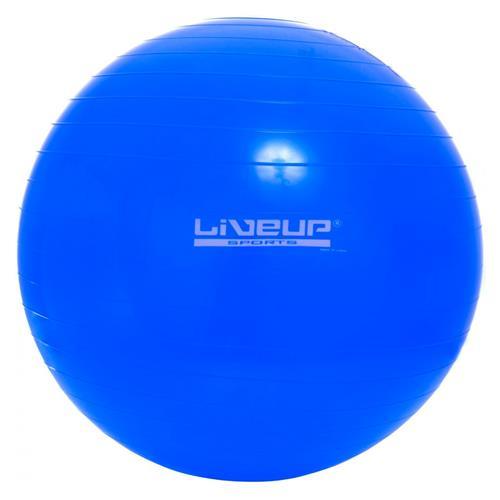 Bola Suiça  65cm - Liveup  - HB FISIOTERAPIA