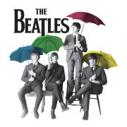 T-shirt Premium Feminina The Beatles Umbrella Colors
