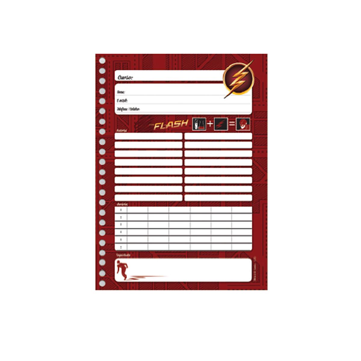 Caderno The Flash Serie Danger 10 Matérias