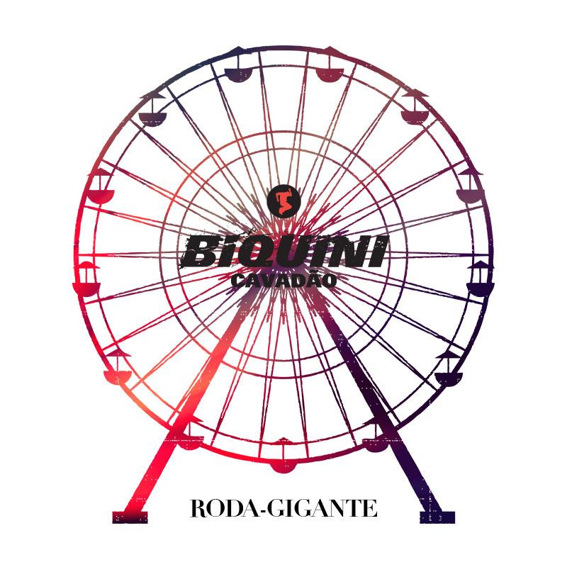 Camiseta Masculina Biquini Cavadão - Roda Gigante Picture