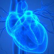 Cardiopatias Congênitas em Pediatria – Reconhecimento Clínico / Raio-X de Tórax  (Werther Brunow de Carvalho)