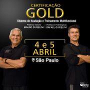 Certificação Gold - Sistema de Avaliação e Treinamento Multifuncional (Mauro Guiselini e Rafael Guiselini)
