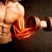 Musculação e Hipertrofia (Prof. Marcelo Pinheiro)