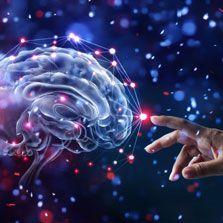 Fisiologia do Exercício: Função Neuromuscular (Bianca Ramallo)  - Cursos distância e aulas online Instituto Phorte Educação.
