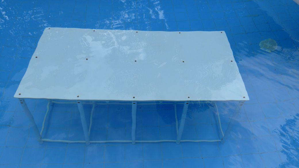 Plataforma de Piscina 2x1x0,5m  - Actualsports  Equipamentos Esportivos