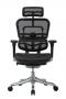 Raynor Eurotech Ergochair Elite V2 Versão 2021  - Moln Design Furniture