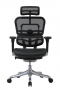 Cadeira Presidente Raynor Eurotech Ergochair Elite V2 Versão 2021 - Moln Design Furniture