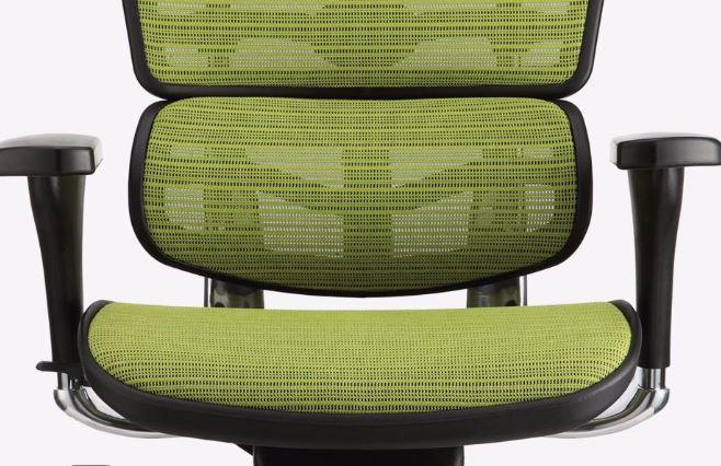 Cadeira Raynor Ergochair V1 2016 Plus Elite Giratoria Ergonomica Anatomica Mesh Verde - Moln Design Furniture