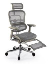 Cadeira Raynor Eurotech ErgoChair V2 2021 Plus Luxury Giratoria Ergonomica em Tela Mesh Prata com Le