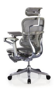 Cadeira Raynor Eurotech ErgoChair V2 2021 Plus Luxury Giratoria Ergonomica em Tela Mesh Prata com Legrest - Moln Design Furniture