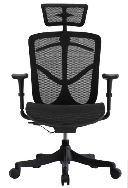 Cadeira Raynor Eurotech Ergochair V2 BRANT CLASSIC Toda em Tela Mesh Preta