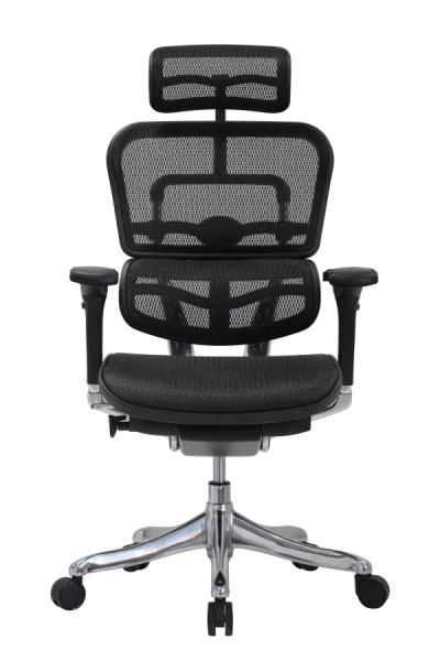 Cadeira Presidente Raynor Eurotech Ergochair Elite V2 Versão 2021