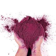Pó Colorido para Festas Holi - Roxo