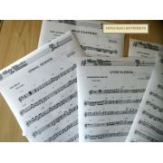 Apostila de Partituras Católicas + CD de Playbacks MP3 e Midis (Volume 1) Impressa Partituras Papel