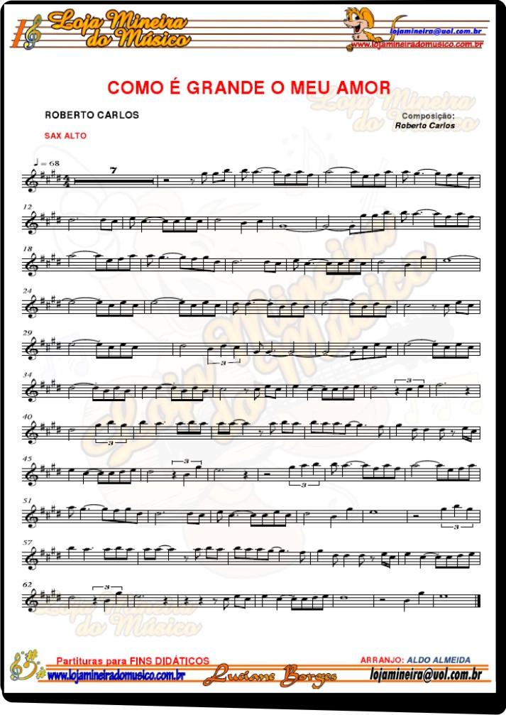 SAX ALTO Casamento Partituras com Playbacks Casamento de 40 Músicas (Sax Popular e Clássicos)