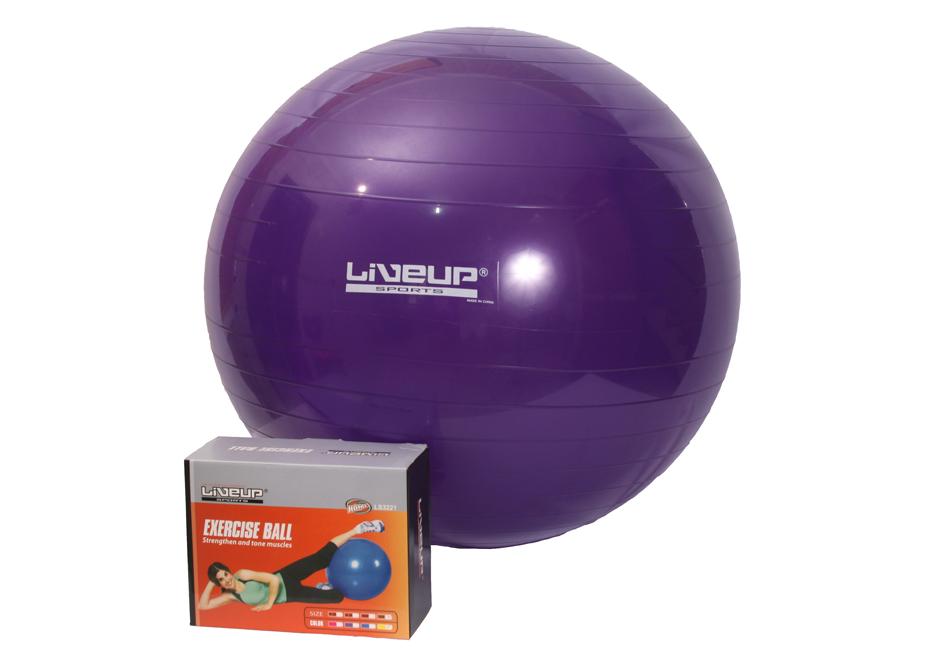 Bola Suíça 55cm LiveUp  - Iniciativa Fitness