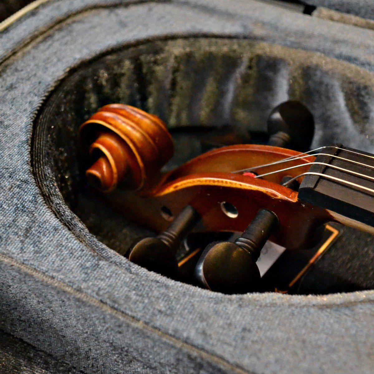 Violino 4/4 Profissional Vignoli VIG 644 - NA