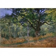 Pôster Decorativo A4 The Bodmer Oak Fontainebleau - Claude Monet Cosi Dimora