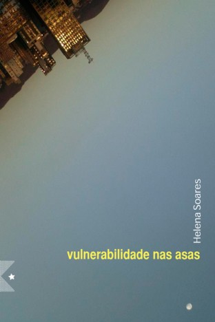 Vulnerabilidade nas Asas, de Helena Soares