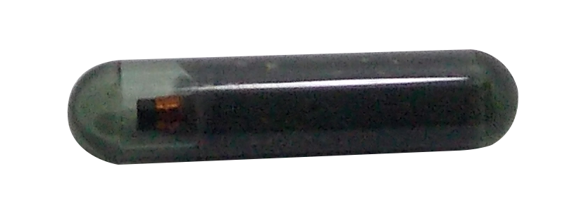 Transponder T44 Gol Novo GER.5 - 5055