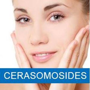 Cerasomosides Redução da Degradação do Colágeno 60mg Cápsulas
