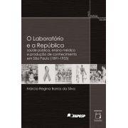 Laboratório e a República: saúde pública, ensino médico e produção de conhecimento em São Paulo (1891-1933), O