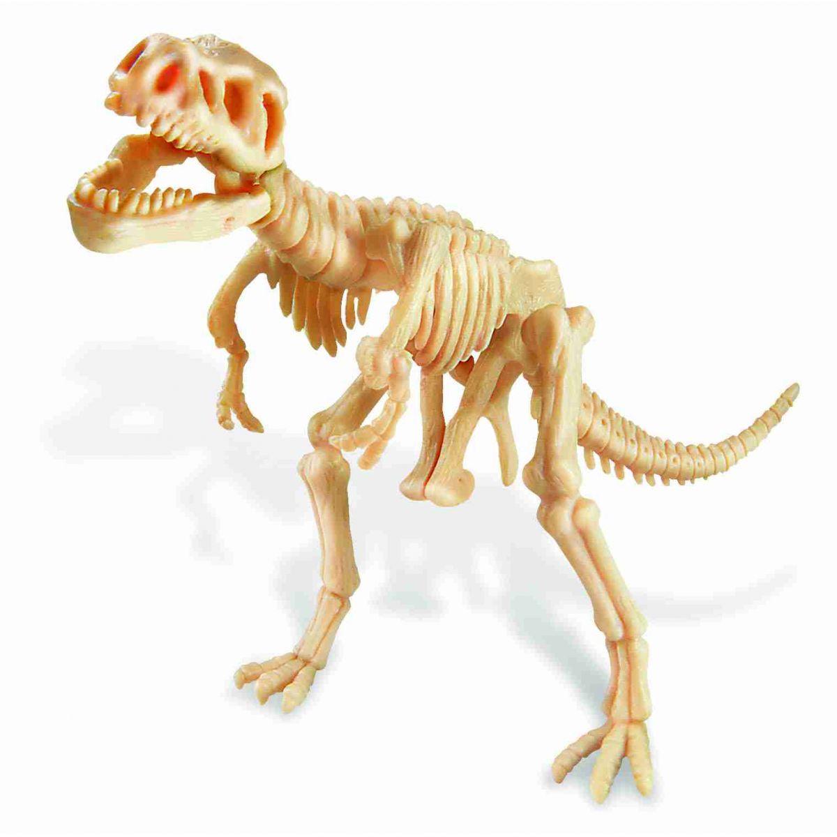 Kit de Escavação Tiranossauro Rex 4M