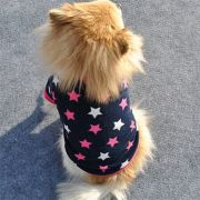 Camisa Cão Gato de Estimação Roupa Toque Macio Acolchoado de cachorro Pet