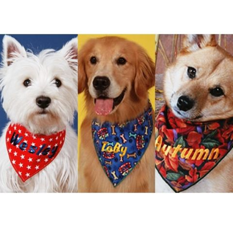 Bandana lenço Grande para PET Cachorro Personalizada