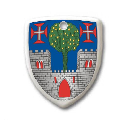 Chaveiro Brasão / Escudo em Plástico Rígido 4cm Personalizado frente e verso