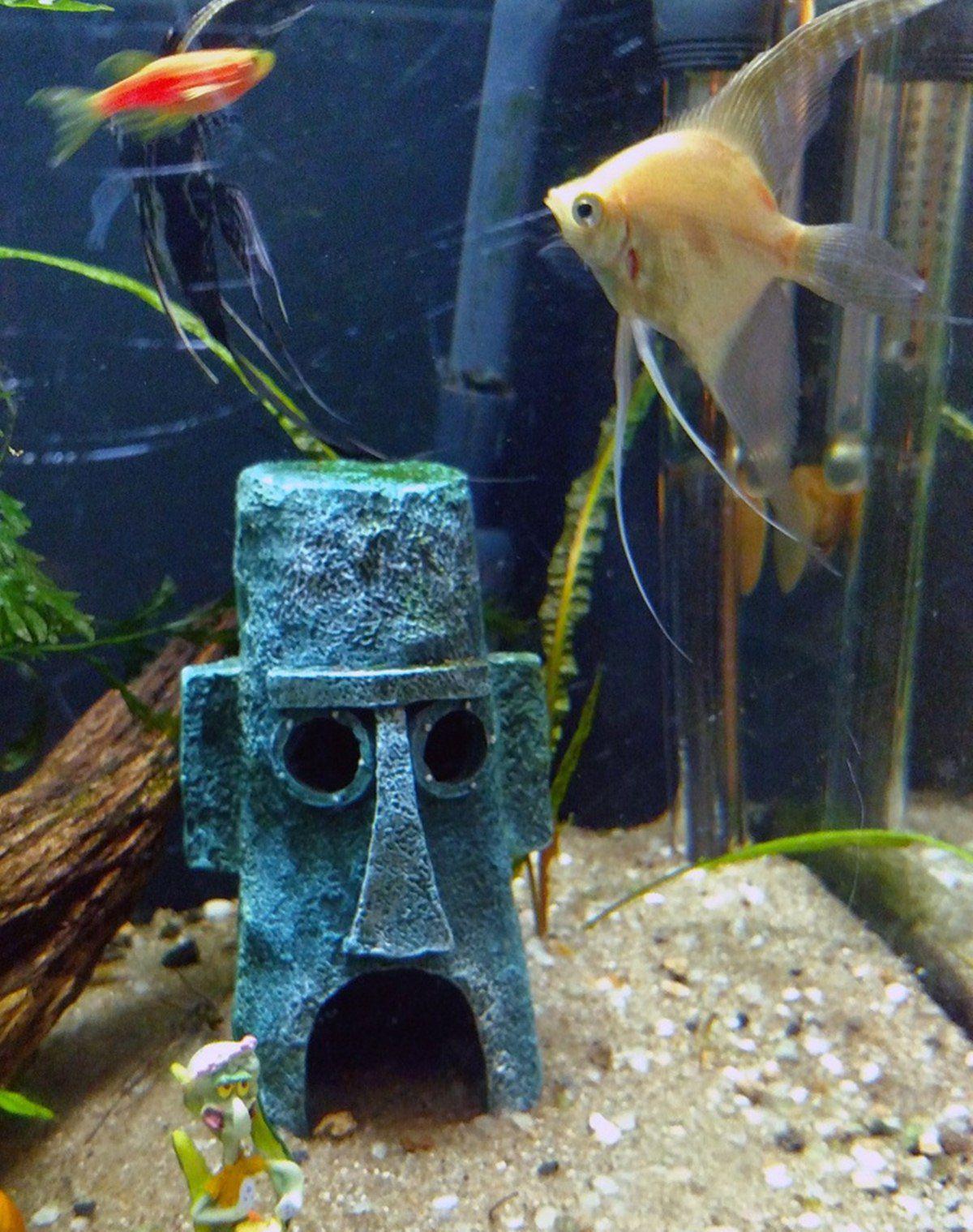Decoração de Aquário Bob Esponja Fenda do Biquini