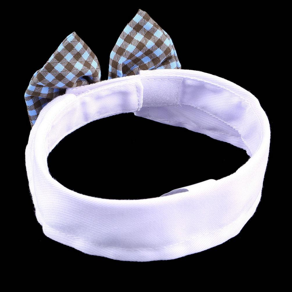 Gravata Borboleta com Colarinho para Pet Gato Filhote de Cão Cachorro