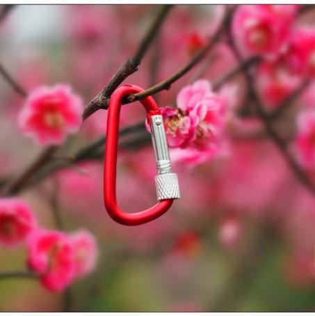 Mini mosquetão gancho com rosca de bloqueio chaveiro para Camping Caminhadas