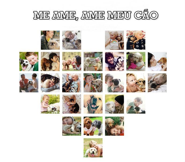 Roupa para seu PET cachorro Adidog em algodão