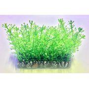 Planta Artificial P/ Aquarios Tapete Blyxa 10cm Soma 064519
