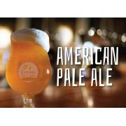 Kit de Insumos Cerveja Artesanal American Pale Ale (APA)
