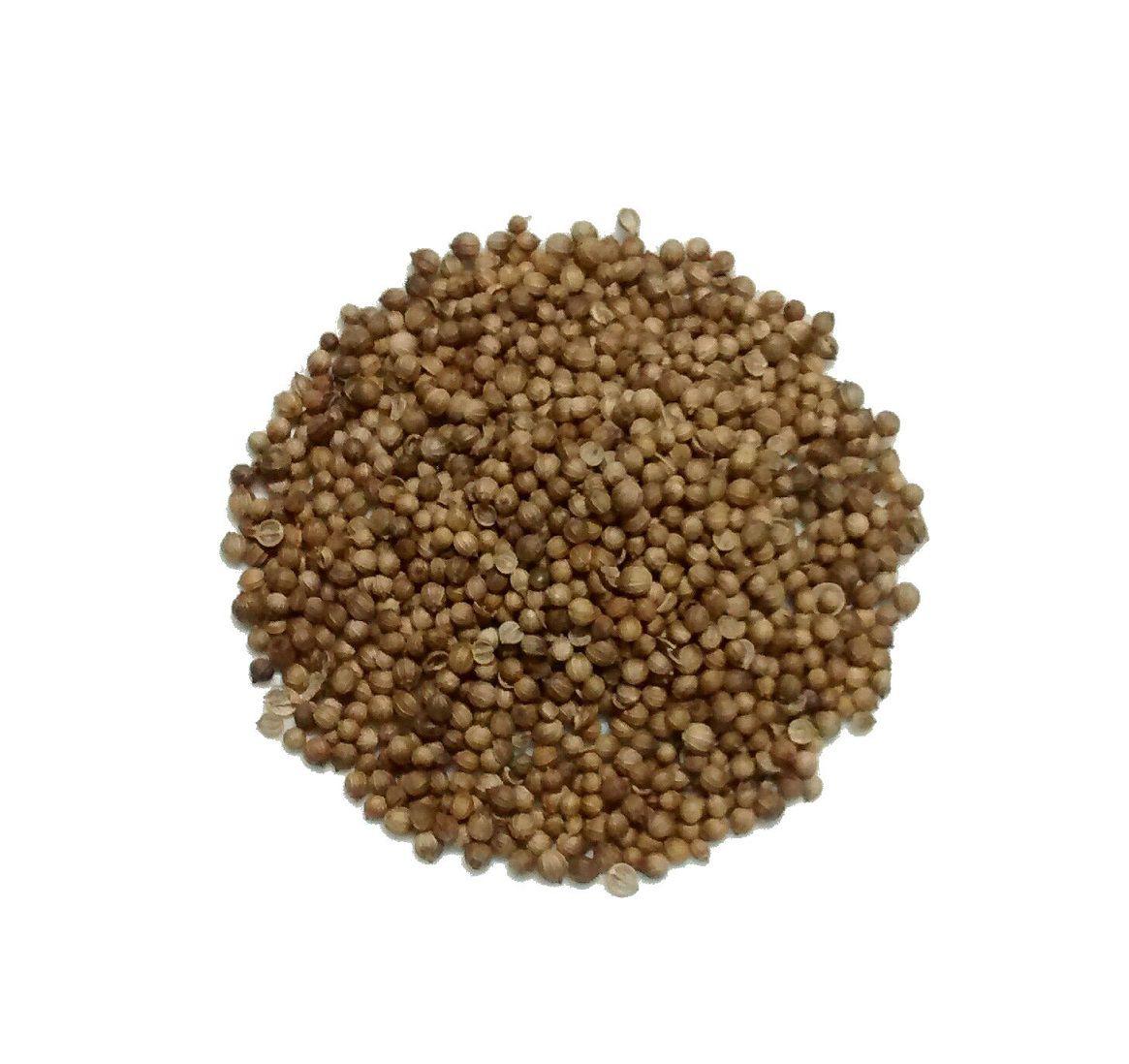 Coentro (grãos)