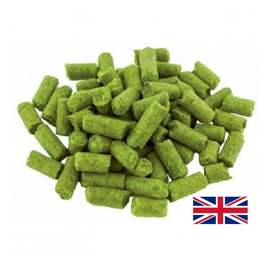 LÚPULO EAST KENT GOLDING - 50g (pellets)