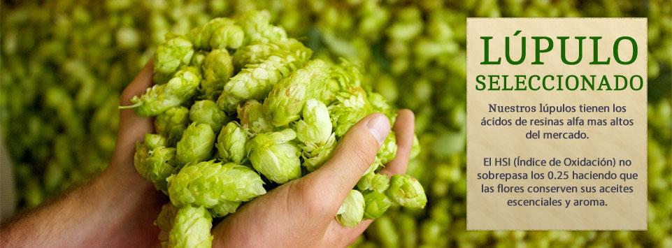 LÚPULO MAPUCHE 50g - PATAGÔNIA (pellets)  - Cerveja da Casa