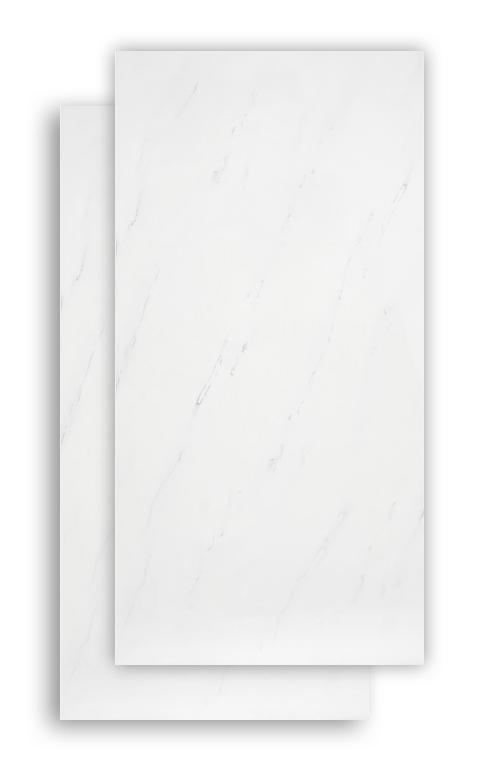 Carrara 120 X 60