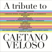 A Tribute To Caetano Veloso - Varios - Cd Nacional