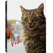 Kedi - Documentário -  Dvd Importado