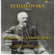 Tchaikovsky / Nenadovsky / Pletnev /Tretyakov / Tchaikovsky Cycle - Dvd Importado