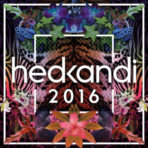 Hed Kandi 2016 - CD  - Billbox Records