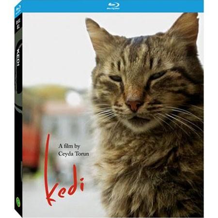 Kedi - Documentário - Blu Ray Importado  - Billbox Records