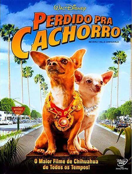 Perdido Pra Cachorro - Blu Ray Nacional  - Billbox Records