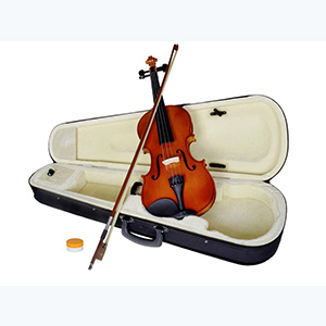 Violino Phoenix M1 4/4 - Billbox Records