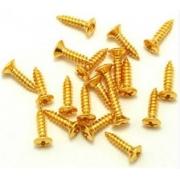 Parafuso dourado para escudo de guitarra e baixo - kit c/ 24 peças (10mm x 2.5mm)