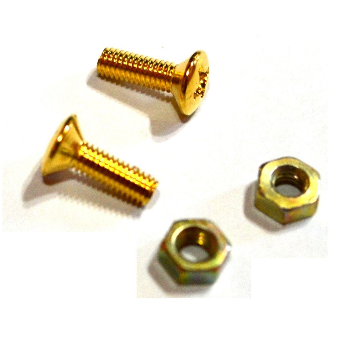Parafuso dourado para escudo (Les Paul) (10mm x 3mm) - Kit c/ 2 peças  - Luthieria Brasil
